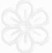 fleur-de-bach-soigneur-animalier-fr-w-74-x-h-75-px-5